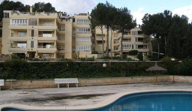 Spacious and bright apartment for rent in Cas  Catalá