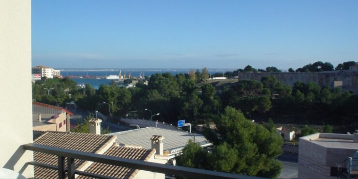 Spacious apartment for rent in Cala Major