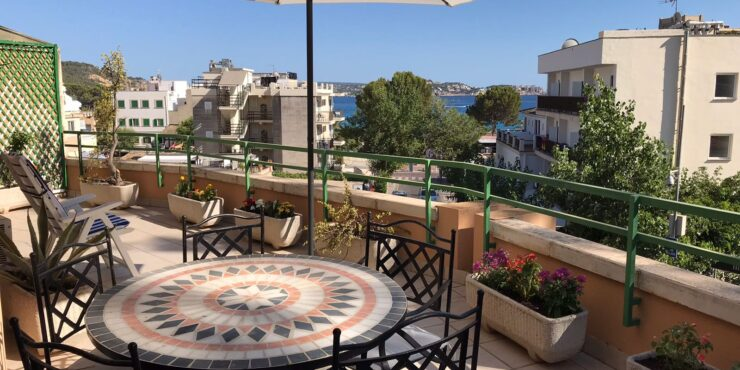 Spacious apartment for rent in Paguera