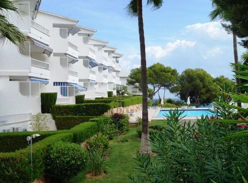 Well-maintained apartment for rent in Palmanova